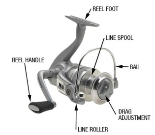 dsp_fish_reel_labeled