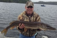"41"" northern pike"