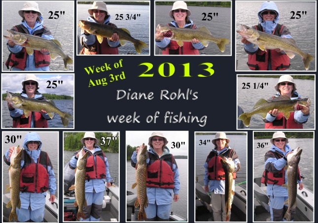 This was a week of fishing for Diane Rohl during Wawang Lake's 2013 Fish Derby.  Looks like she got some good fishing in for sure!