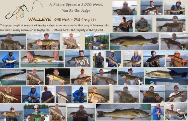 8 Lake Map & Stats