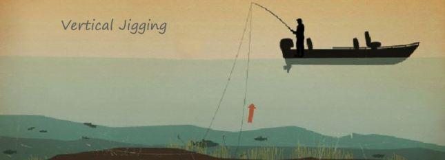 Vertical Jigging