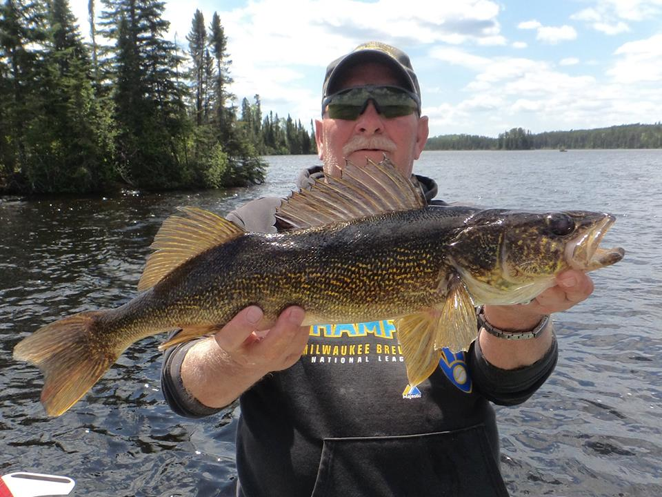 Top five walleye fishing tips wawang lake resort for Fishing for walleye