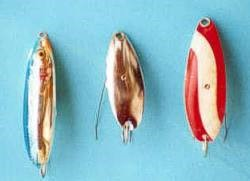 The weedless lures I use, a blue and silver Rapala, Johnson Silver Minnow, Johnson Daredevil