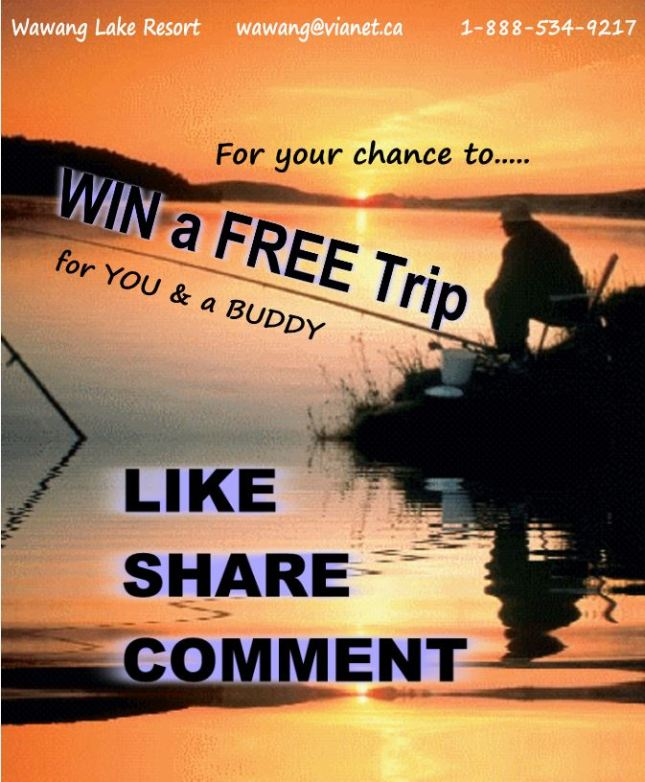 LIKE Us on FACEBOOK for your chance to WIN