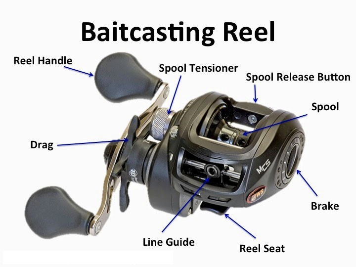 Fishing reels wawang lake resort for How to reel in a fish