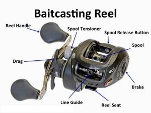 baitcast2